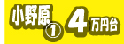 CAT-INDEX: 「吹田キャンパス」 - 小野原01 4万円台